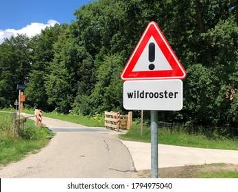 Signal de signalisation routière néerlandais pour un réseau de bétail.