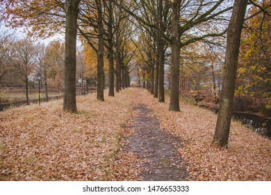 The Dutch village of Bourtange. Autumn. Fallen foliage on the ground. The path between the trees. Riverbank and bridge.