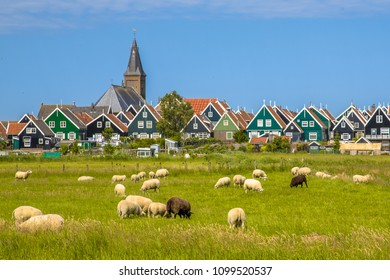 Dutch Village with colorful wooden houses and church with sheep on the foreground on the island of Marken in the Ijsselmeer or formerly Zuiderzee, the Netherlands