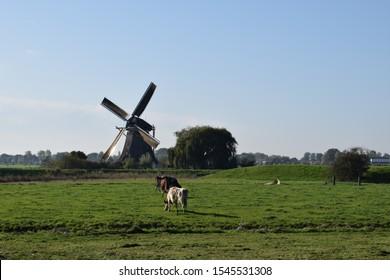 dutch wind mill painted by Piet Mondriaan near Aboude/Amsterdam