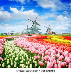 Dutch wind mills