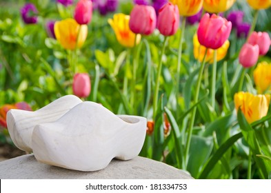 dutch wooden shoes on a rock in tulip garden