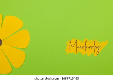 Dutch word Moederdag (Mothers day) on a green background with a large yellow paper flower. Room for text.
