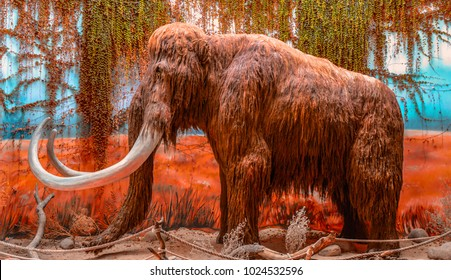 Dvur Kralove, Czech Republic, 08/13/2013 - Big old mammoth in a natural environment