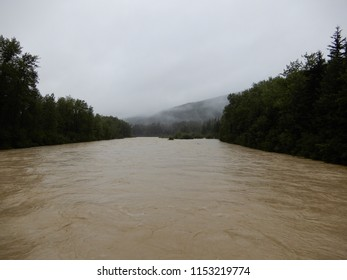 Dyea, AK / US - August 9, 2018: The Taiya River nears flood stage after heavy rains combined with greater than average glacial melt. The flooding caused the Chilkoot Trail to be closed to hikers.