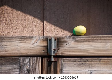 Dyed Easter egg sitting on beam of wooden shed during egg hunt