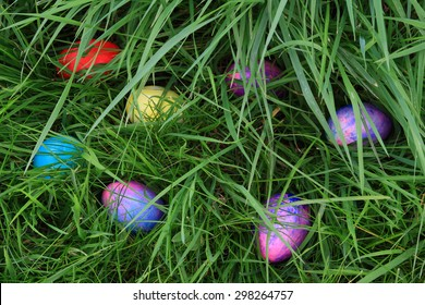 Dyed, (painted, colored) eggs hidden in the grass for children to look and find them ? Easter Eggs Hunting.