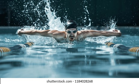 The dynamic and fit swimmer in cap swimming by butterfly style in the pool. The young man. Sport, healthy lifestyle, competition, training, athlete, energy concept