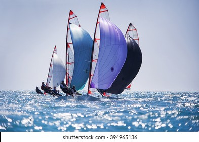 dynamic team struggle to the regatta sailing ship