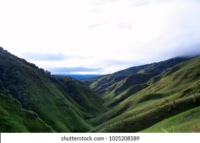 Dz kou Valley. Border of the states of Nagaland and Manipur, India. Well known for its natural beauty, seasonal flowers and the overall flora and fauna.