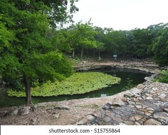 Dzibilchaltun Cenote