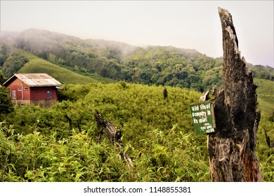 Dzukou Trekkers Hut, Dzukou Valley, Nagaland, India
