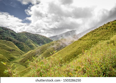 Dzukou Valley, a beautiful valley of flowers that's situated in the Northeast Indian states of Nagaland and Manipur.