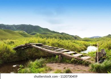 Dzukou Valley Bridge