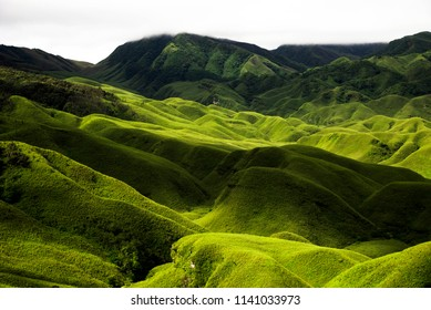 The Dzukou valley is located at the border of the Indian states of Nagaland and Manipur. It is characterized by its unique landscape. It is a good trekking destination as well.