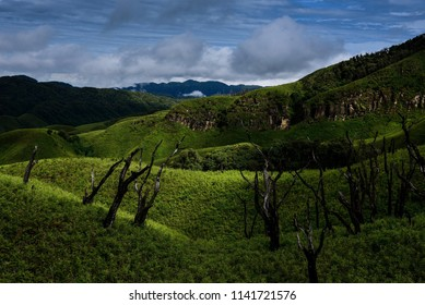 Dzukou Valley, Nagaland, Northeast India. The Dzükou Valley is located at the border of the states of Nagaland and Manipur of India. The will be a good destination for trekkers who love to trek.