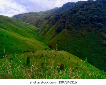 Dzukou Valley, Nagaland, Northeast India. The Dzukou Valley is located at the border of the states of Nagaland and Manipur