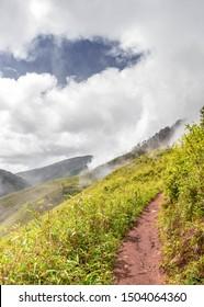 Dzukou Valley trekking, Northeast India