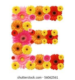 E, flower alphabet isolated on white