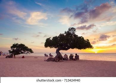 EAGLE BEACH, ARUBA - MARCH 15, 2017:  view of Eagle Beach Aruba at sunset with Divi Divi tree and tourists.