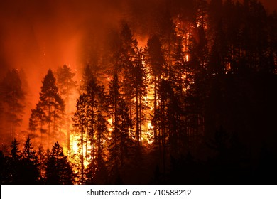 Eagle Creek Wildfire in Columbia River Gorge, Or