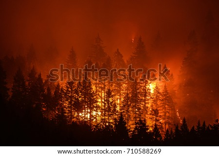 Eagle Creek Wildfire in