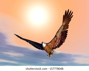 Eagle flying in front of the sunset with wings wide open