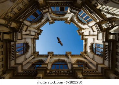 Eagle is flying over the Venetian loggia in Heraklion, Greece