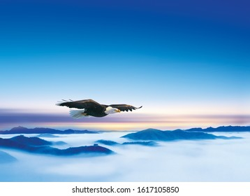 An eagle soaring above the landscape