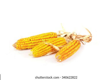 An ear of corn isolated on white background
