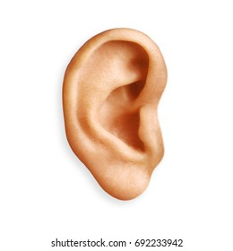 ear isolated