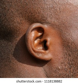 Ear in a man with black skin