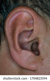 Ear of a man macro photo. Human ear. Auricle. Small details close-up. Pores on the auricle. Ear hair close-up.