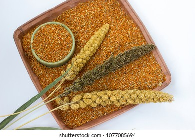 Ear of the millet. One box with millet grains. White background. Top view