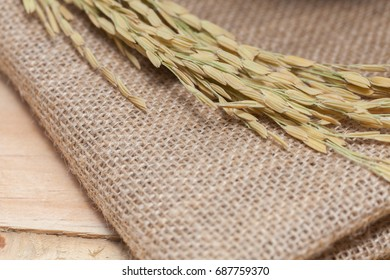 ear of rice on sack