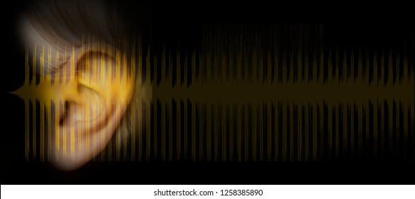 ear and sound wave