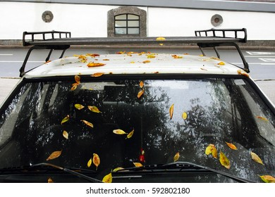 Early autumn in a city. The windshield and the roof of a car are covered with fallen yellow leaves. Russia, Moscow, September 2015.