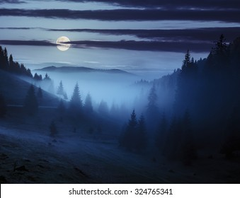 early autumn landscape. fog from conifer forest surrounds the mountain top at night in full moon light