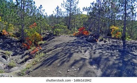 Early autumn and landscapes in the Istrian peninsula - Buzet, Croatia (Rana jesen i pejzazi u unutrasnjosti poluotoka Istre - Buzet, Hrvatska) - Shutterstock ID 1686161842