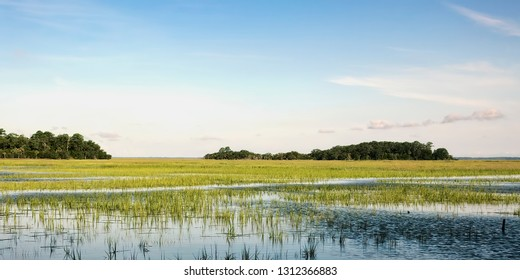 Early evening, close to high tide in the tidal marshes off Port Royal Sound in Beaufort County, SC, near Hilton Head Island.
