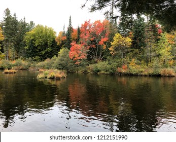 Early fall trees changing colour reflected in calm water.