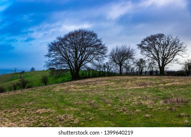 Early March morning from Deacon Hill to the Pegsdon hills and Hoo Bit Nature reserve Chiltern hills Bedfordshire east England