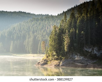 Early misty morning on the lake in the national park Durmitor and mountainous shores covered with fir trees. The lake shore covered with stones and high mountains in the background