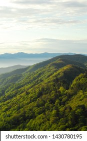 An early morning in the Appalachian Mountains during a sunny summer day.