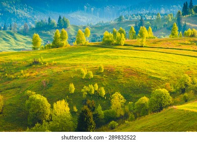 Early morning in a Carpathian valley with trees in beautiful light of sunrise