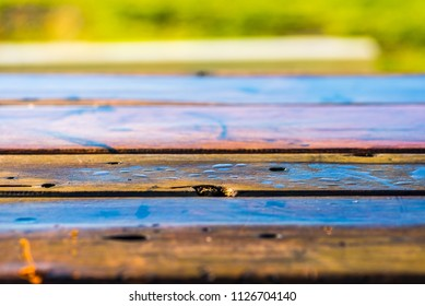 A early morning close view of a wooden parkbench after a rainy night