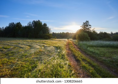 Early morning in the field. Beautiful summer landscape with sun and fog and a road