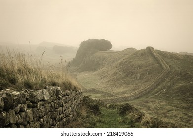 An early morning fog has descended over Hadrian's wall in Northumberland, England, close to the Scottish border.
