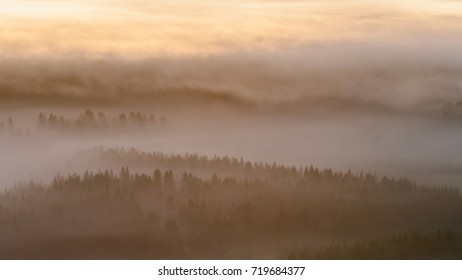 early morning fog over a bog in finland