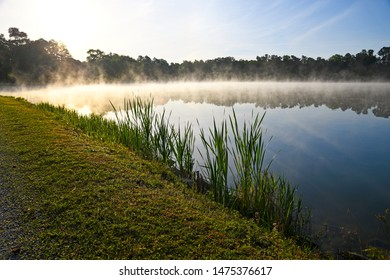 early-morning-fog-over-lake-260nw-147537